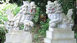 施工事例:3 狛犬の画像